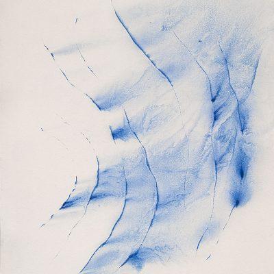 Algues, 2010. Tinta litogràfica sobre cartró. 125x88 cm.